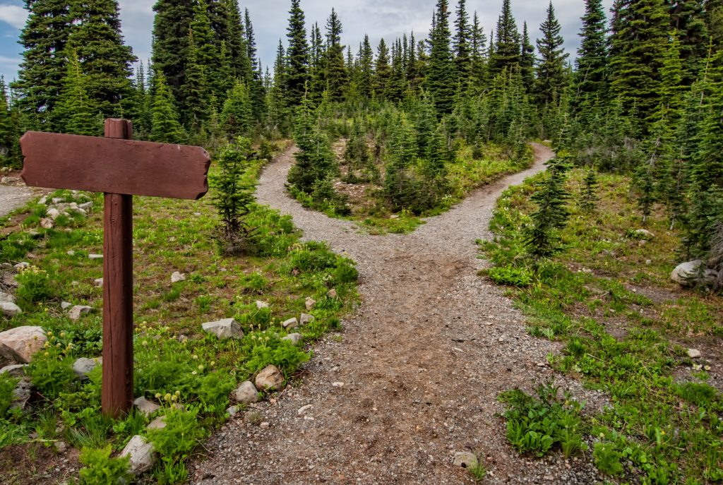 Staying safe in the mountains stay on marked hiking trails